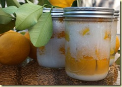 preserved_lemons_250px