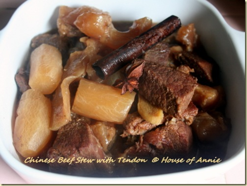 Chinese Beef and Tendon Stew