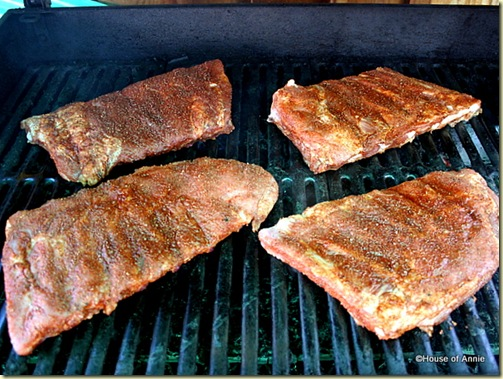Pork Spareribs on the Gas Grill