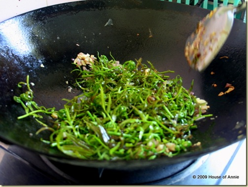 stir-frying midin with garlic and shallots