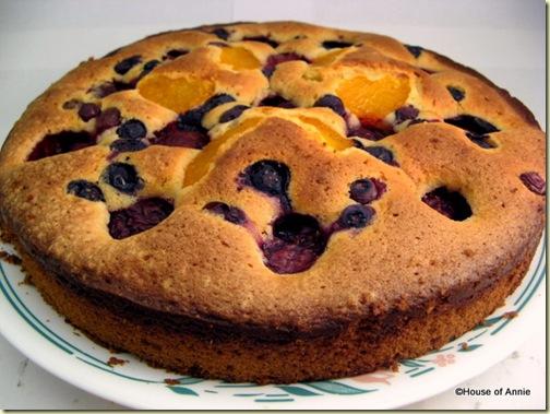 Plum Blueberry Mandarin Fruit Pastry Baked