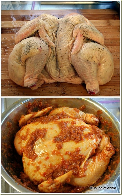 seasoning and marinating chicken ramadan