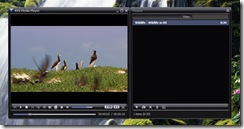 AVS Media Player 4.1.2.65