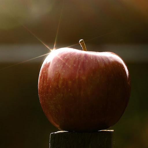 obuoliukas