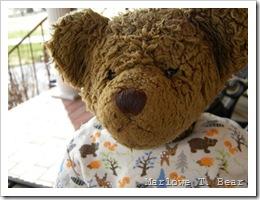 tn_2010-03-31 Marlowe