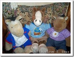 tn_2009-06-27 Floppy Pony Family_edited-1