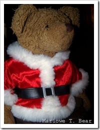 tn_2009-11-21  Marlowe in Santa Outfit