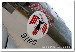tn_2010-07-28 083 EAA AirVenture_edited-1
