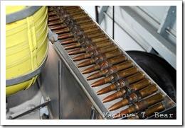 tn_2010-07-28 089 EAA AirVenture_edited-1