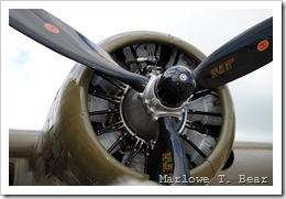 tn_2010-07-28 082 EAA AirVenture_edited-1