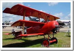tn_2010-07-28 207 EAA AirVenture_edited-1