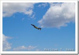 tn_2010-07-28 245 EAA AirVenture_edited-1