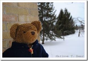 tn_2011-02-13 Marlowe