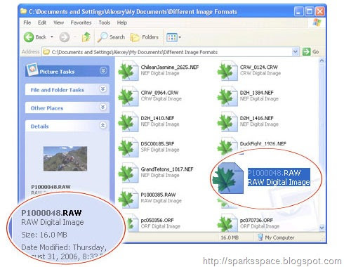 Windows Standard Builds Security Compliance Checks