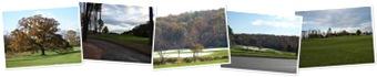 View teddi7291951