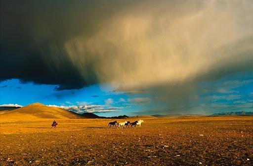 Matthieu Ricard - En chemin vers le Mont Kaïlash