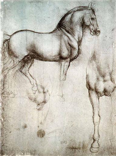 Étude de cheval - Léonard de Vinci