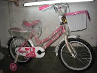 Sepeda Anak EVERGREEN 18AP PENGUIN