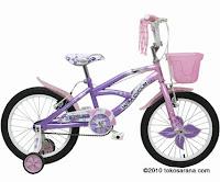 Sepeda Anak WIMCYCLE Mini SKYLAB 18 Inci