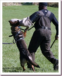 2009.10.18 Training (2)