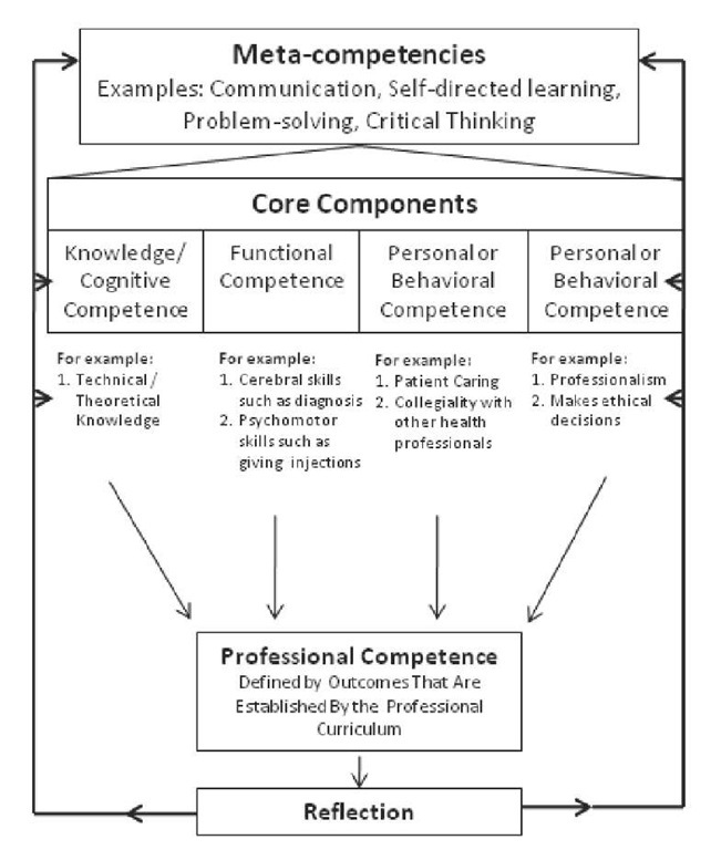 professional competence and values An organizational culture may not lend itself to cultural competence and professional how to manage the dynamics of building culturally competent organizations.