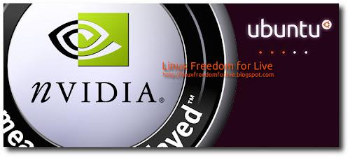 nVidia 270.41.19 su Ubuntu