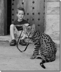 kathrin-stucki-photos-savannah-cat-and-son-3