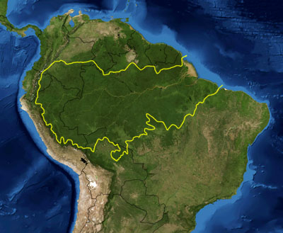 Amazon rainforest area