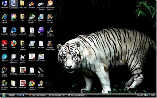 wallpapers tiger. Tiger Wallpaper