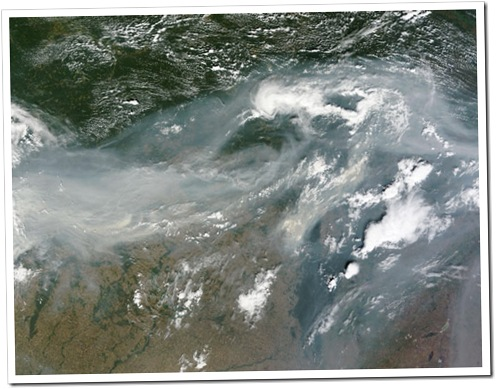 Fotografia mostrando incendios no oeste russo (Foto: NASA / MODIS Rapid Response)