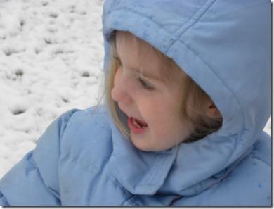 Snow Feb 2010_3