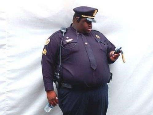 fat-cops
