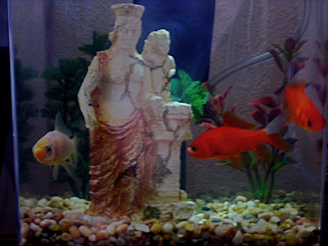 Brian, Stan and Brian in their tank