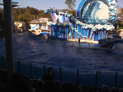 Sea World Orlando Florida