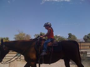 Horses for Heros