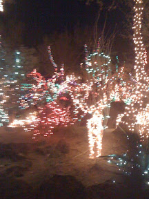 Ethel M. Chocolate Cactus Garden holiday lights