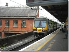 Dublin (305)