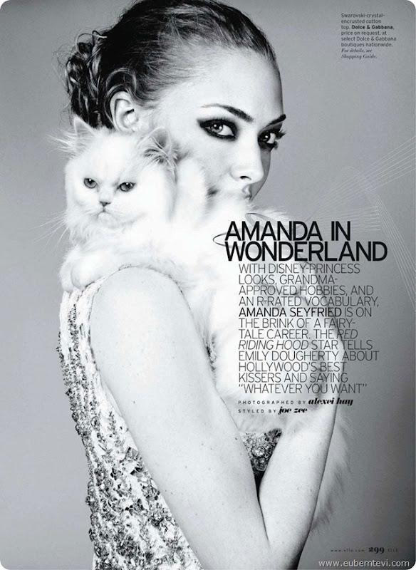 amanda-seyfried3