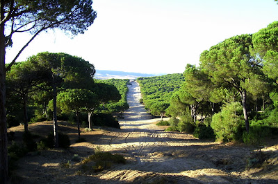 Parque Natura de La Breña-Barbate