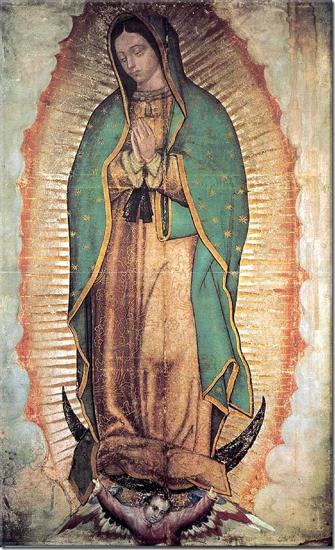 virgen guadalupe (5)