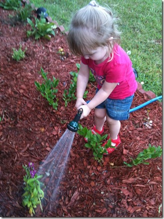 B Watering the Flowers copy