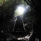 烏尾山の山頂へ続く木のトンネル。