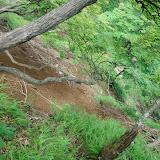 不動の峰の近くにある水場へ、水を補給しにいこうとしたら、地すべりが起きていてこれ以上進めなかった。