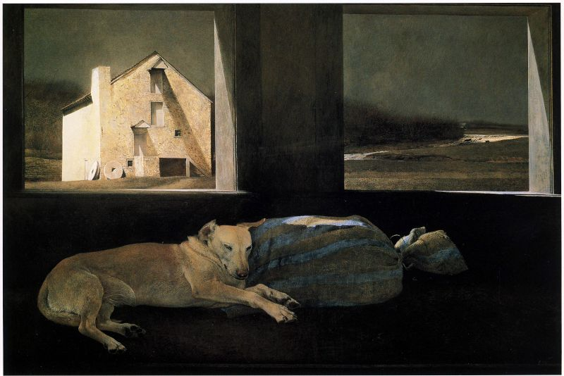 Andrew Wyeth Night Sleeper