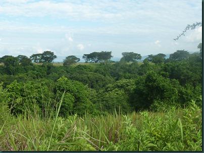 Queen Eliz park and Kampala 268