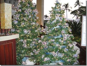 クリスマス・ハワイ島