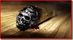 Fumo 15