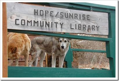 Friendly Library Patrons!