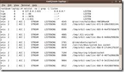 netstat_linux