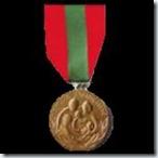 0526 médaille de la famille française